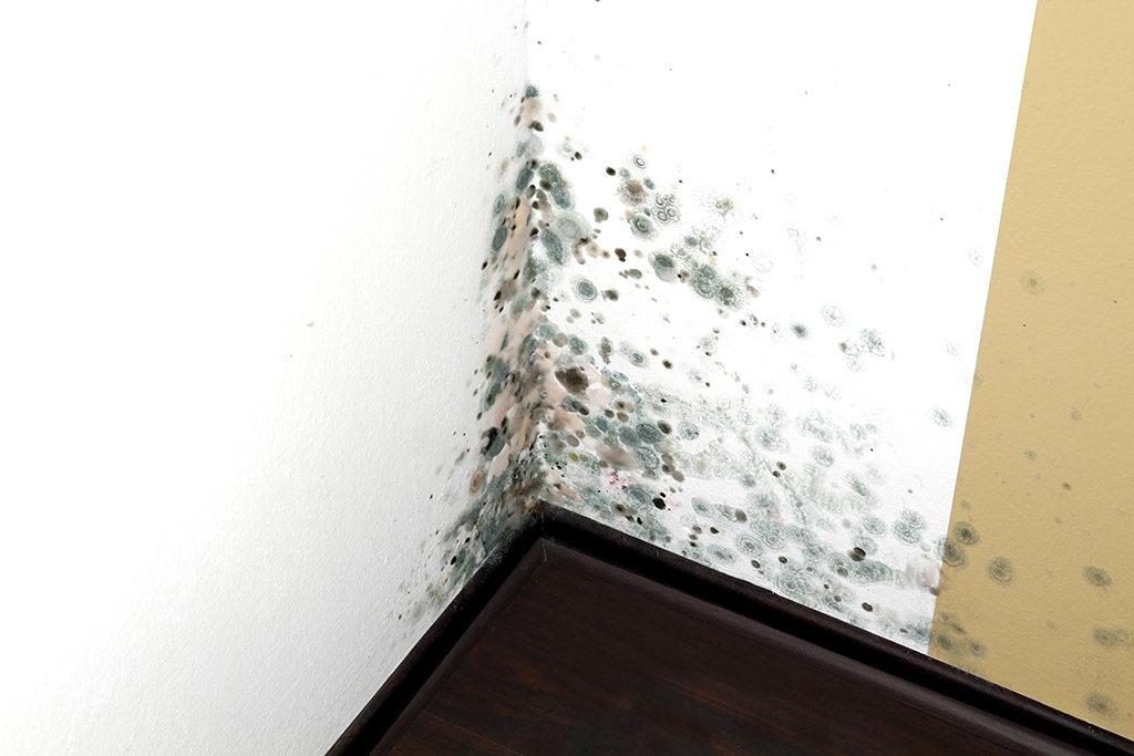 Ремонт квартир картинки для загрузки стрелка разделена