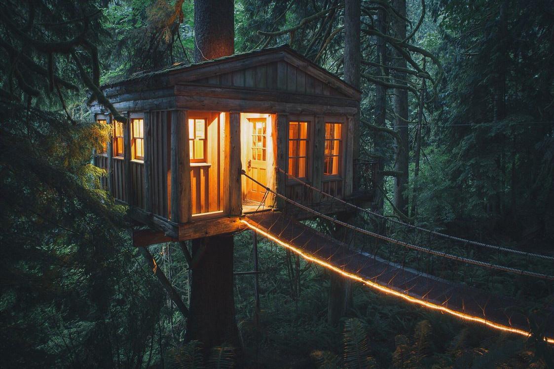 них может дом на дереве в лесу фото игрушки