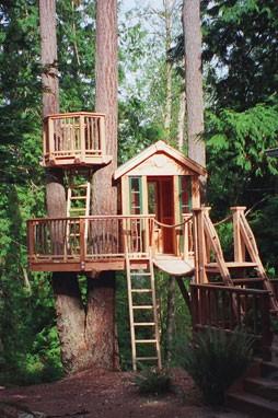 Дом на дереве - 50 идей для воплощения в реальность