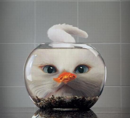Как сделать аквариум искусственный фото 608